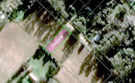 Sosiego 2006